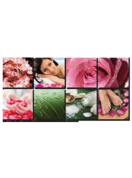 Canvas Mural Fresh Pink II Ensemble