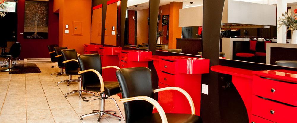 Hair Equipment Accessories