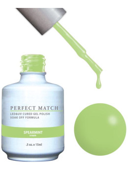 LeChat Perfect Match Gel Polish DUO SETS - Spearmint PMS120